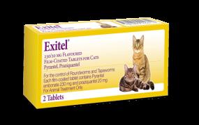 Exitel Plus® for Cats